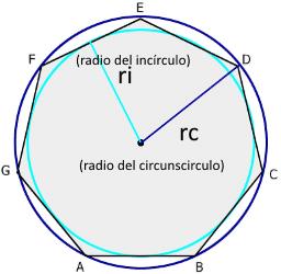 heptagono incirculo y circunscirculo